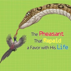 The Pheasant That Repaid a Favor with His Life